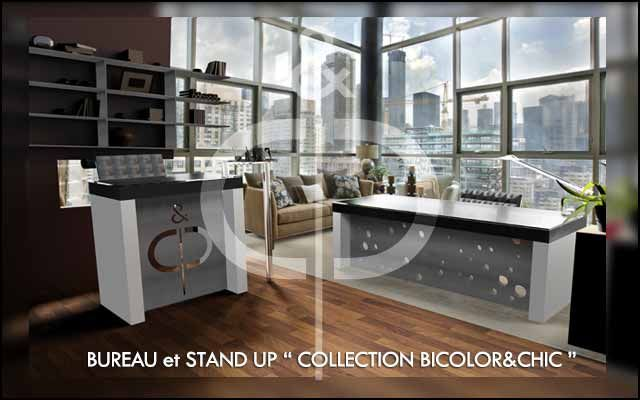 "BUREAU et STAND UP  ""COLLECTION BICOLOR&CHIC"""